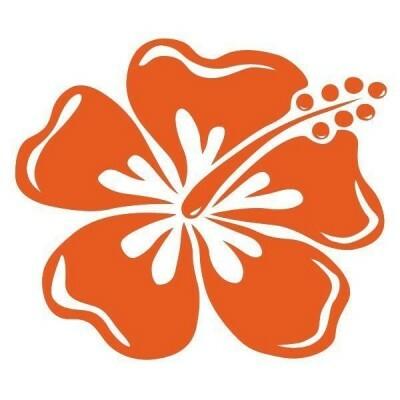 logo Budo Sport de Tanger