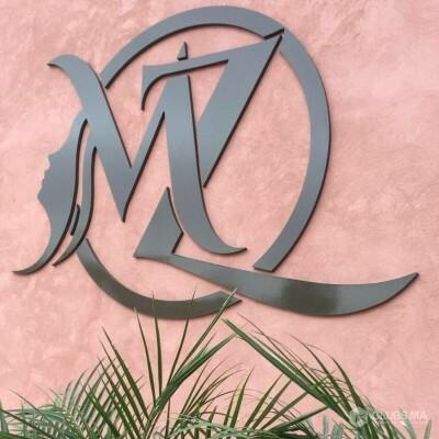 logo Morphozone