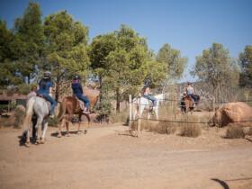 Terres d'Amanar balades equitation marrakech Marrakech