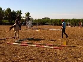 La Ferme Equestre de Dar Bouazza à Dar Bouazza