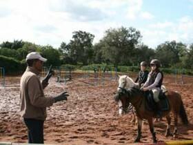 Poney club de Rabat Ecoles d'équitation Rabat