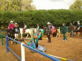 Poney club de Rabat Ecoles Rabat