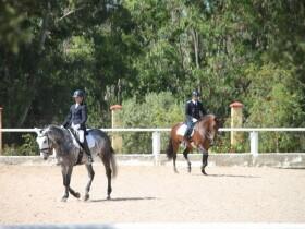 Royal Club Equestre Le Carrefour équitation à benslimane Mohammédia