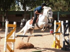 Club Equestrian Ould Jmel à Casablanca